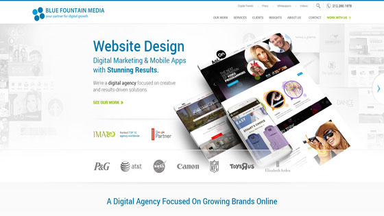 ecommerce website design by Blue Fountain