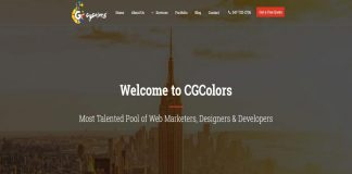 CG Colours ecommerce web design New York
